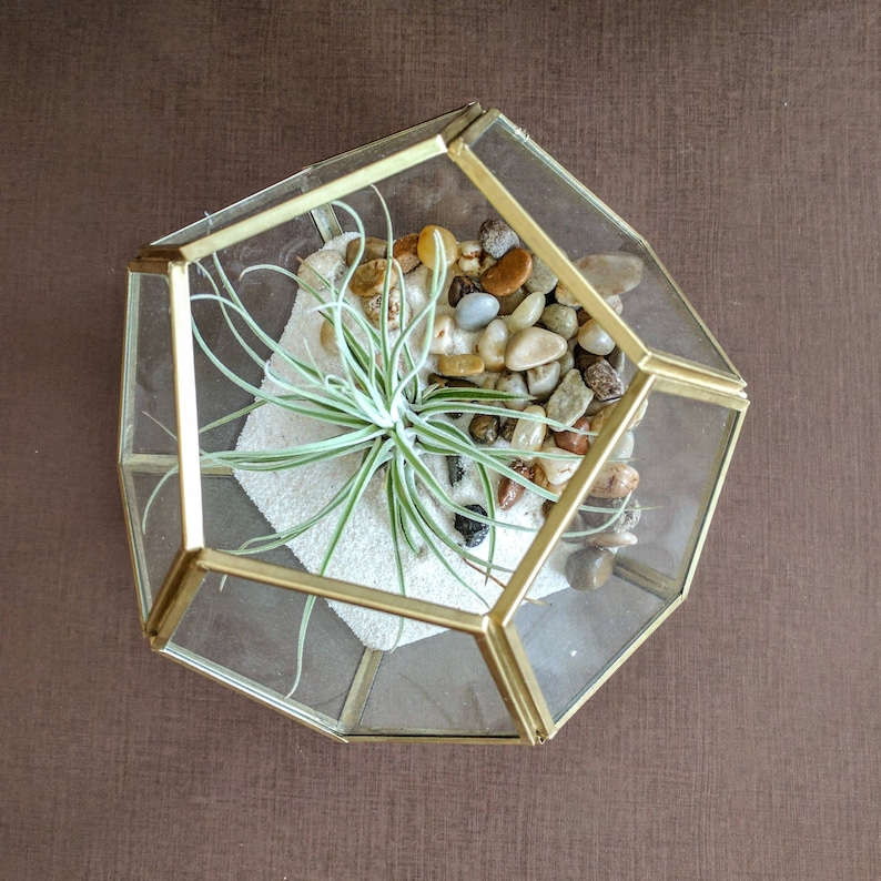 White Sand and Large Air Plant Kit Geometric Brass Air Plant Terrarium with Pebbles