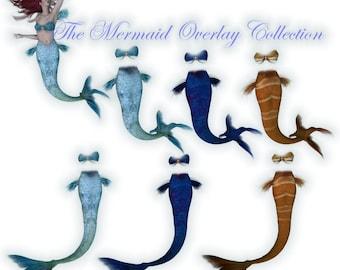 Mermaid Overlays PNG Tubes