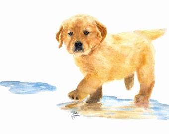 Canvas Print, Puddles, Golden Retriever Puppy, Dog Art, Golden Retriever Picture, Art, Dog Art, Original Dog Art,