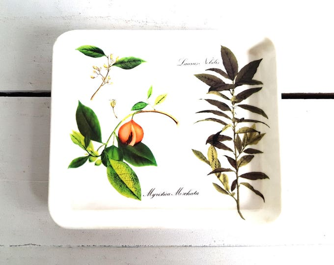 Lovely vintage serving dish 'herbs'