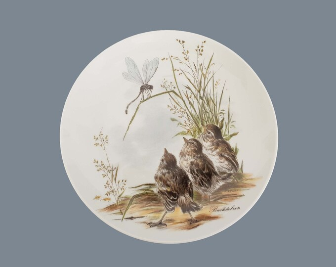 Vintage decorative wall plate birds • AK Kaiser wagtails • botanical wall decoration • wall hanging plate • small birds decoration plate
