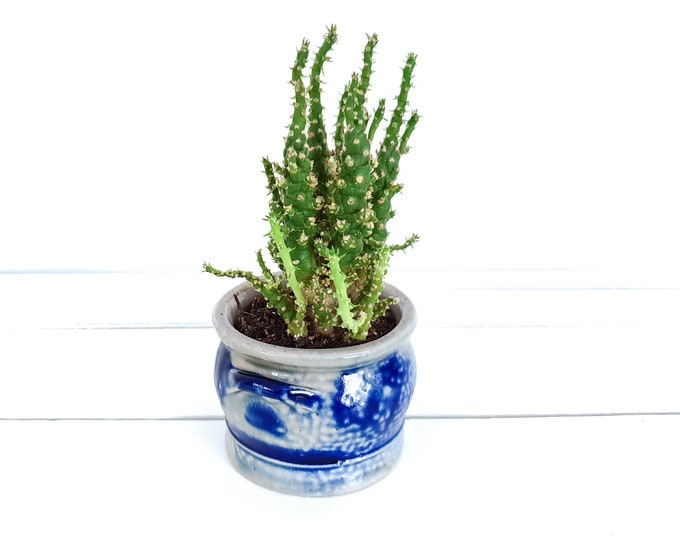 Vintage Westerwald saltpot cobalt blue • handmade saltglazed pottery • vintage planter • decorative ceramic west Germany