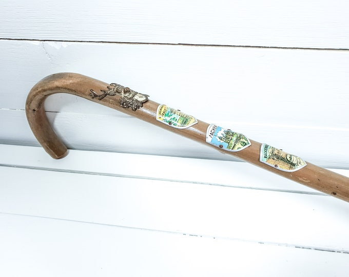 Old wooden cane with metal shields • vintage mountain walking stick • nostalgic walking cane • rustic hallway decoration