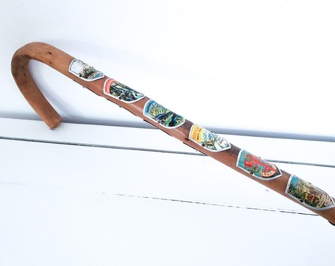 Old wooden cane with metal shields • vintage mountain walking stick • nostalgic walking cane • rustic decoration