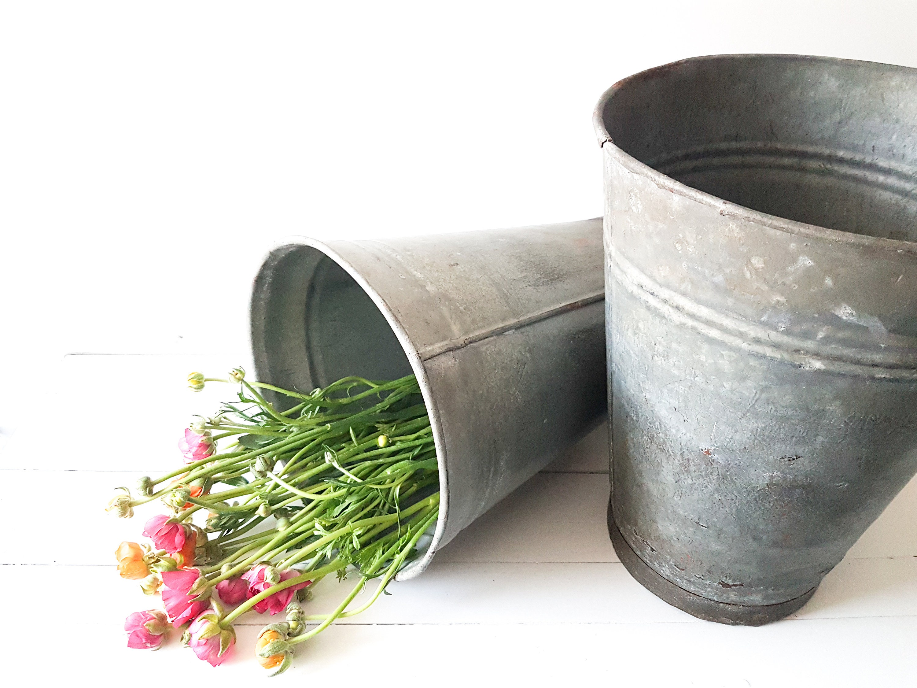 Zinc Flower Vases on zinc desk, zinc basket, zinc patina, zinc dog, zinc metal, zinc car, zinc chest, zinc table,