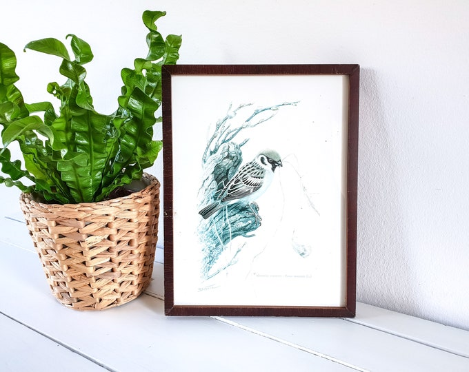 Beautiful framed print Sparrow • old sparrow bird print • vintage wall decoration • lithography • vintage fauna image