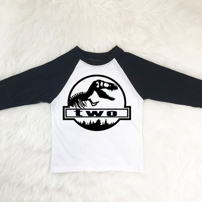 Dinosaur Birthday Shirt Two Year Old Shirts Boy