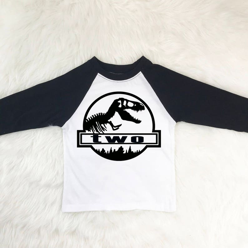 Dinosaur Birthday Shirt Two Year Old Shirts Boy