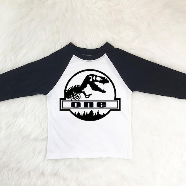 First Birthday Dinosaur Shirt Boy Outfit 1st