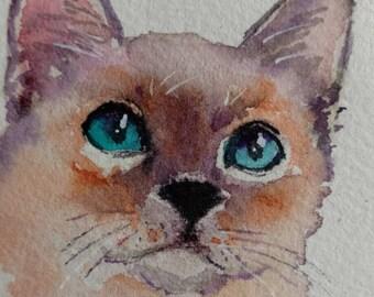 siamese kitten cat ACEO original WATERCOLOR