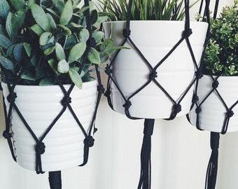 black & white hanging plant