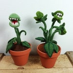 AB 30Euro Fleichfressende Plant felted, Venus trap, made of wool, artificial plant in clay pot
