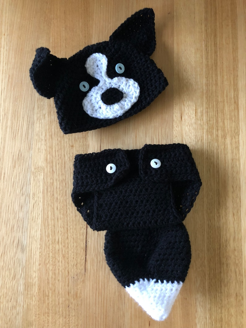 Bordercollie and Bernease Mountain Dog Dog Costumes