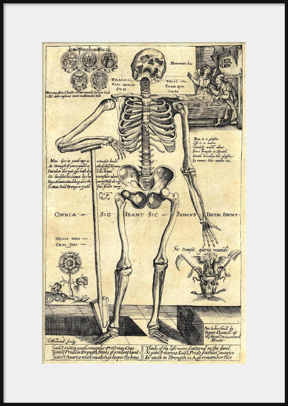 1620 HUMAN SKELETON Leaning on Spade Drawing NEW Fine Art   Etsy