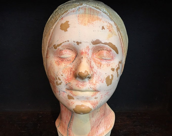 Antique French medical model of the head, blood and muscles