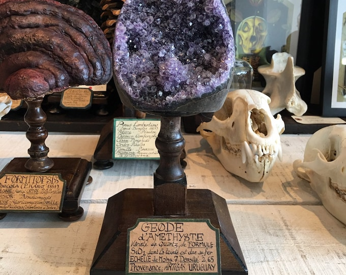 Mineral amethyst geode on wood display, antique French museum style