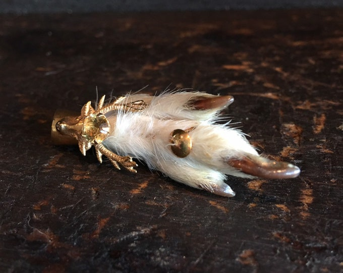 Vintage Scottish lucky foot pin brooch bied taxidermy