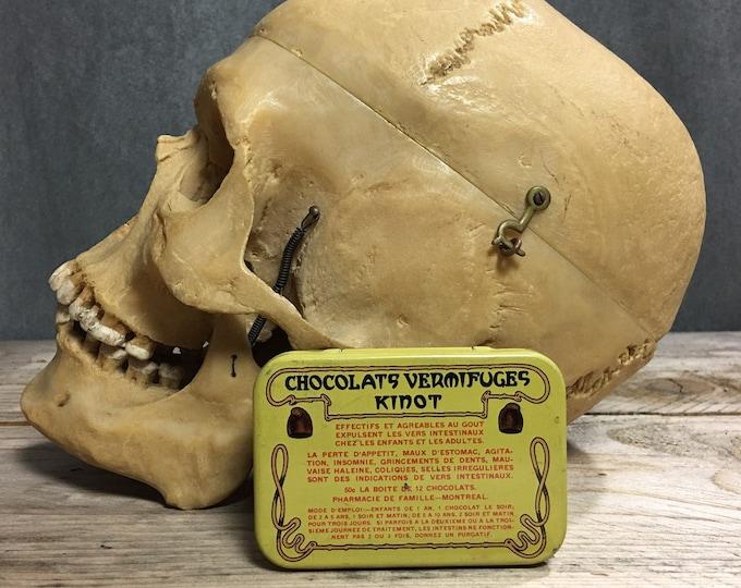 Antique vintage Kinot worm chocolate tin box