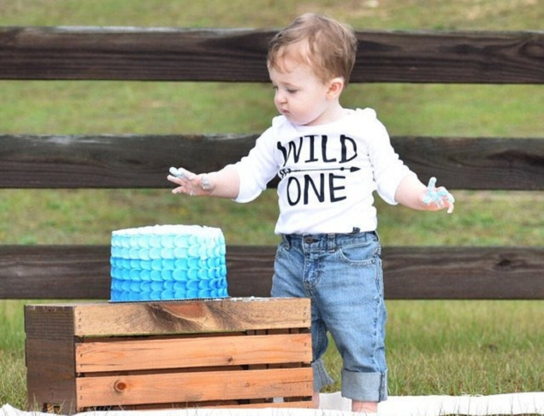 Bodysuits Wild One Baby Boys 1st Birthday Outfit Smash Cake First Bodysuit
