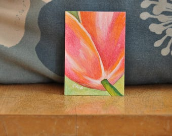 ACEO Pink Tulip