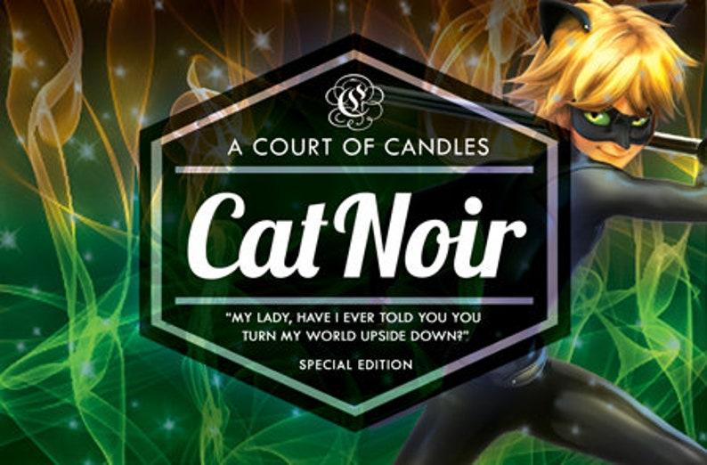 Cat Noir / Chat Noir - 9oz Soy Wax Candle - Miraculous Ladybug