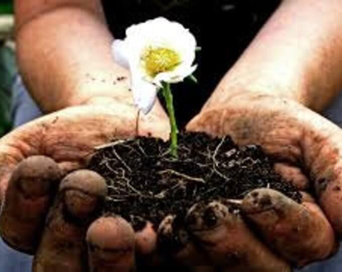 Gardeners Hand Cream, Natural Skincare, Organic Skin Care from New Zealand, Face & Body.