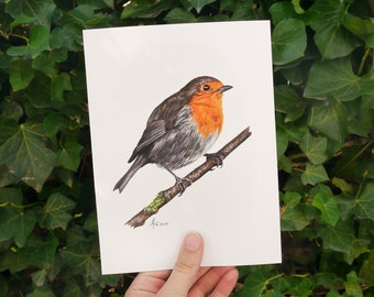 Watercolor Art Print Robin • 15 x 20 cm • Spring-like poster with illustration of a songbird