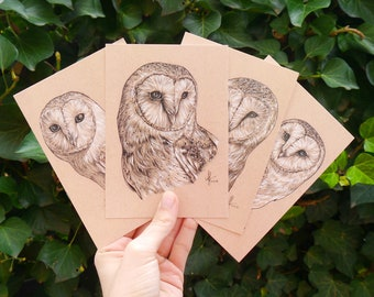 Four Barn Owls Postcard Mix • DIN A6 • Postcard Set with Drawing of a Barn Owl