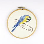 Bird picture, embroidered yellow Macaw in the hoop