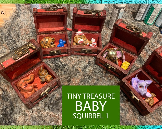 BABY SQUIRREL Tiny Treasure Chest Pal