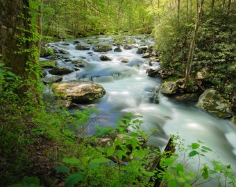 Fine Art Photography PRINT, Wall Decor, Rivers, Streams, Water, Hiking, Great Smoky Mountains National Park, Tennessee | Spring in Tremont