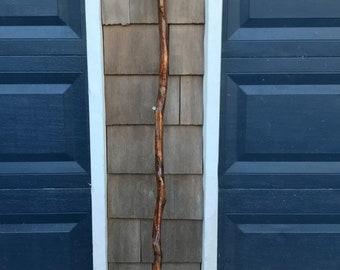 Birch wood walking/hiking stick