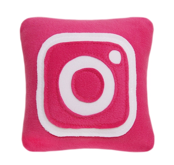 Fantastic Decorative Pillows For Couch Instagram Pillow Gift Idea Throw Pillows Accent Pillows Pink Pillow Geek Pillow Couch Pillows Evergreenethics Interior Chair Design Evergreenethicsorg
