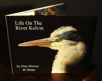 Life on The River Kelvin  by Pete Murray