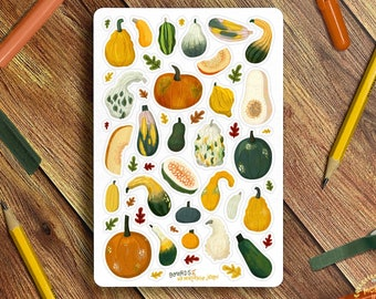 Gourds Sticker Sheet, Autumnal Gourds Stickers - Great for Bullet Journaling, Planners, Kids, Fun! Crafter's Sticker Sheet