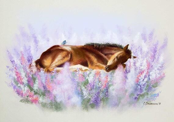 Cute Baby Horse Sleeping Baby Baby Room Decor Cute Horse Etsy