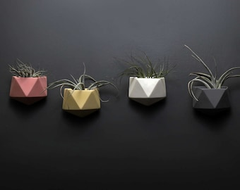 Geometric Air Plant Pot