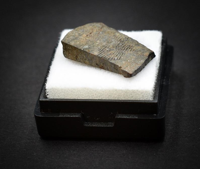 Space NWA Stony Meteorite 2,52 g Ordinary Chondrites Great for Collectors Saharan Desert NonCom Amazing gift design statuette