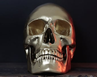 Bulli - Solid Gold Full Scale Life Size Realistic Human Skull Replica with Removable Jaw / Art / Ornament / Home Decor