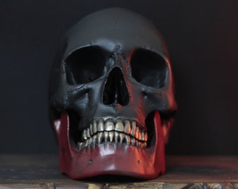 The Fools Goldsmith - Heavily Distressed Matte Black & Red Life Size Realistic Human Skull with Gold Teeth / Art / Ornament / Home Decor