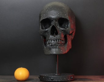 The Stone Temple - Textured Black Life Size Human Skull Replica Bust on Display Stand Plinth / Skull Art / Statue / Ornaments / Home Decor