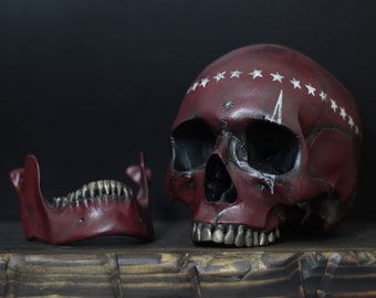 Sanctus - Wine Red Life Size Realistic Human Skull Replica with White Star Crown & Removable Jaw / Skull Art / Ornament / Decor