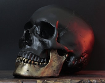 The Gold Jaw - 2-Tone Matte Black & Antique Gold Life Size Realistic Human Skull Replica / Art / Ornament / Home Decor / Painted Skulls
