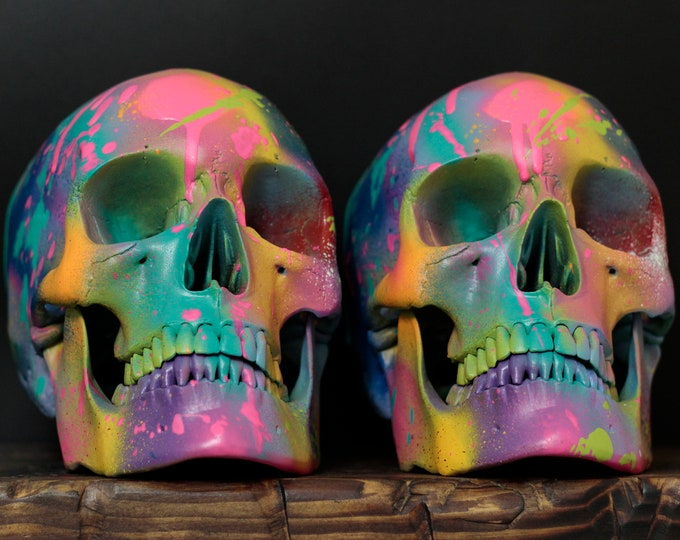 Featured listing image: Les Adulte Terribles - Pair of Life Sized Matte Rainbow Paint Splash Painted Human Skulls / Art / Contemporary / Decor / Book Ends / Modern