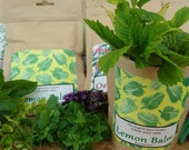 Grow Your Own Lemon Balm, Grow Kit, Herbs and Spices, Gardening, Stocking Stuffers, Party Bags