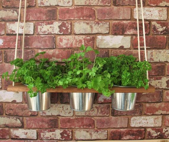 Hanging Shelf And Pots Kitchen Herb Garden Windowsill Etsy