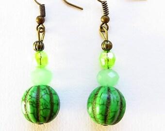 Earring hooks earrings 17604