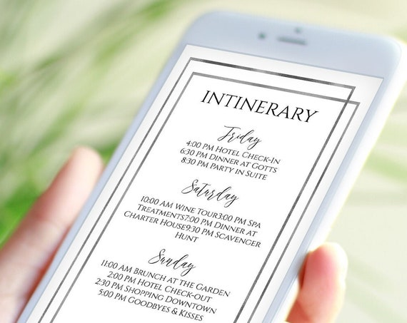 Foil Silver Electronic Wedding Itinerary, Bachelorette, Family Reunion, Electronic Info, Email Details, Editable Text, Corjl PPW-NY21