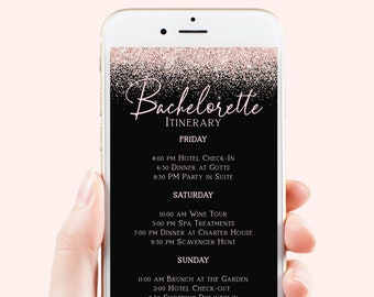 Bachelorette Itinerary Email Template, Bachelorette Party Schedule, Text Message, Blush Pink Glitter, 100% Editable Template PPW90 PPW92