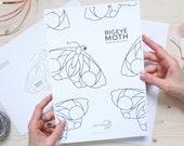 DIGITAL DOWNLOAD Stained Glass Pattern | BIGEYE Moth .mini Suncatcher
